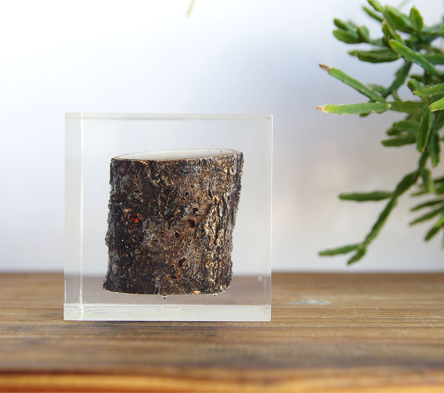 Resin With Wood Inside